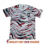 maillot coree edition speciale crazy capsule 2020-2021 gris rouge