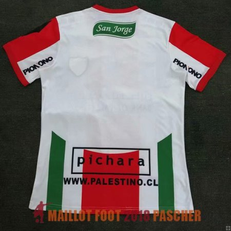 maillot deportivo palestino 2019-2020 exterieur
